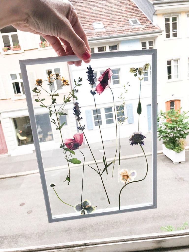 Blumen | DIY | Blumenbild | Sommer | Sommertutorial | Sommerblumen Tutorial | Blumenbild Tutorial | Bild | selber machen | DIY Geschenke | DIY Deko | DIY Geburtstag Ideen | Geburtstagsideen | getrocknete Blumen | Tutorial mit getrockneten Blumen | Step by Step Anleitung | Schritt für Schritt Anleitung