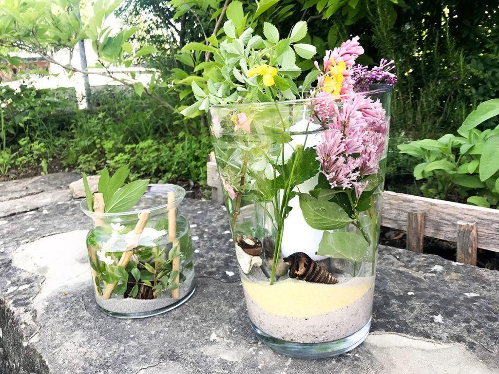 Windlicht   Sommer DIY   Deko für jeden Anlass   Tischdeko   Vasen Windlicht   einfach und günstiges DIY