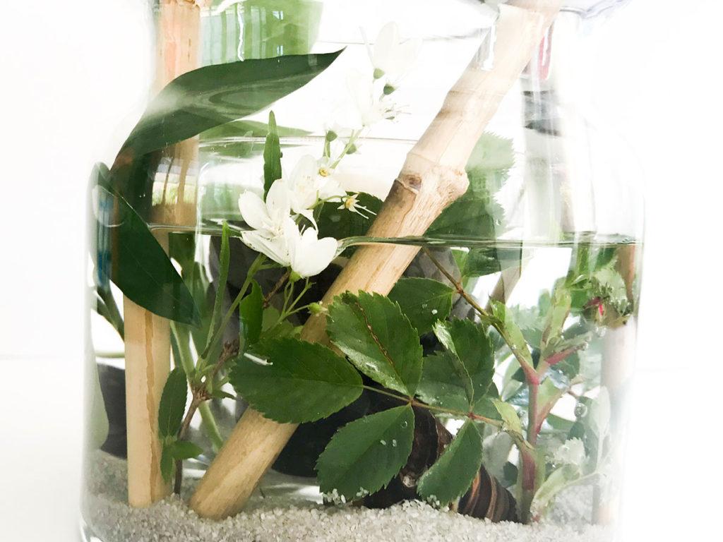 Sommer DIY   Tischdeko   Deko für jeden Anlass   einfach und günstiges DIY   Windlicht   Vasen Windlicht
